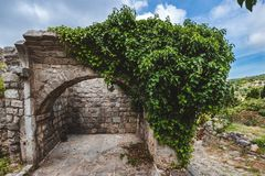 Ancient Ruined Arc and Ivy Wall in Stari Bar. Ancient stone ruins and ivy wall archway at Old Bar town on Montenegro. Stari Bar - ruined medieval city on Stock Photos