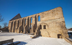 Ancient ruined St. Brigitta convent in Tallinn Stock Photography