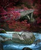 Ancient ruined stone bridge across a mountain river. In the Caucasus Royalty Free Stock Photo
