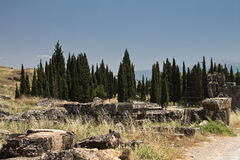 Ancient ruins of anatolian civilization in hierapolis with pine trees in hot desert, pamukkale, turkey. Ancient ruins of anatolian civilization in hierapolis Stock Photos