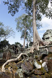 Ancient ruins at Angkor wat, Cambodia Royalty Free Stock Photography
