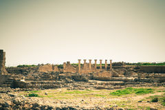 Ancient ruins in the Archaeological Park of Paphos, Cyprus. Tone Royalty Free Stock Photo