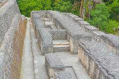 Ancient ruins in Belize Stock Photo