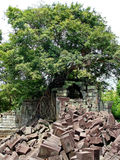 Ancient ruins of Beng Melia in the jungle, Cambodia. Royalty Free Stock Photography
