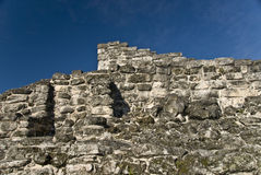 Ancient ruins at Cozumel  Stock Photos