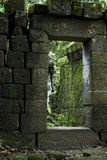 Ancient Ruins deep in a forest Royalty Free Stock Photo