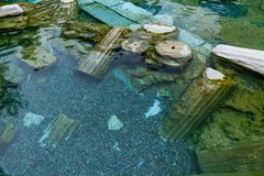 Drowned ruins of ancient city, Hierapolis near Pamukkale, Turkey Royalty Free Stock Photography