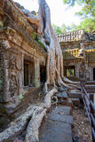 The ancient ruins of a historic Khmer temple in the temple compl Stock Image