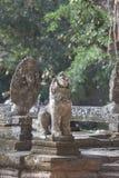 Ancient ruins in Angkor Wat Royalty Free Stock Images