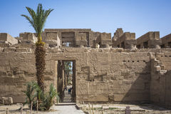 Ancient ruins of Karnak temple in Luxor. Egypt stock photo