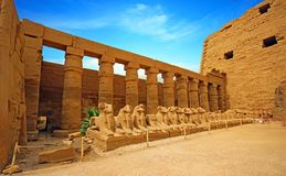 Ancient ruins of Karnak temple in Luxor . Stock Photos