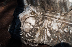 Ancient ruins of lion. Archeological find of lion`s head on the ground Stock Photography