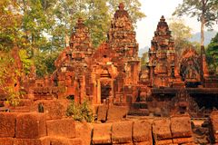 Ancient ruins in the middle of the jungle. Banteay Srei ruins surrounded by jungle, Angkor Wat complex, Cambodia Stock Photo