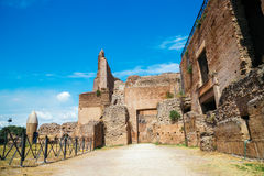 Ancient Ruins in palatine hill at Rome, Italy. Palatine hill at Rome, Italy Royalty Free Stock Photo