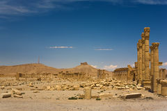 The ancient ruins of Palmyra Stock Photo