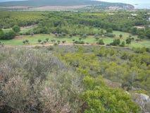 Puig de sa Morisca (Moorish Peak) archaeological park in Majorca. Ancient ruins in Puig de sa Morisca (meaning Moorish Peak) archaeological park in Majorca Stock Photos
