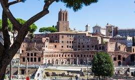 Ancient ruins of roman forum in Rome, Lazio, Italy Royalty Free Stock Photography