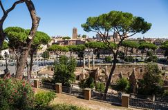 Ancient ruins of roman forum in Rome, Lazio, Italy Royalty Free Stock Photos