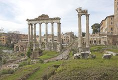 Ancient ruins in Rome, Italy. Ancient ruins of Roman Forum in Rome, Italy Stock Images