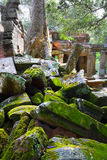 Ancient ruins of Ta Prohm Stock Image