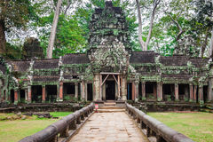 Ancient ruins in Ta Prohm or Rajavihara Temple at Angkor, Siem R Royalty Free Stock Photography