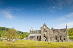 Ancient Ruins, Tintern Abbey, Wales, UK Stock Photos