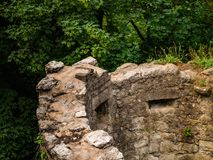 Ancient ruins of a tower wall in a forest in Germany Drachenfel stock photography