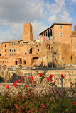 Ancient ruins on the Trajan forum, Rome, Italy Royalty Free Stock Images