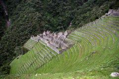 Ancient ruins of Winaywayna Royalty Free Stock Photos