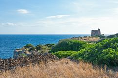 The ancient rural huts of the Puglia teriitoy Royalty Free Stock Photo