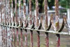 Ancient Rusted Gate Royalty Free Stock Photography