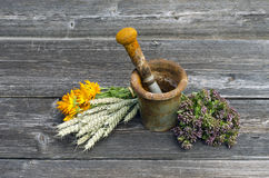 Ancient rusty iron mortar and medical herbs on old wooden background Royalty Free Stock Image