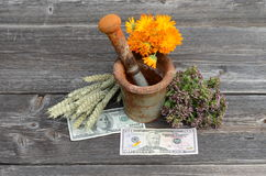 Ancient rusty iron mortar and various medical herbs with dollar money Stock Image