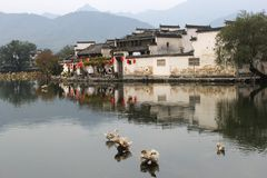 Wild ducks can transfer bird flu, H5N8 and HN9 viruses into the continents, ancient water village Hongcun (Unesco), China. Ancient water village Hongcun along Royalty Free Stock Images