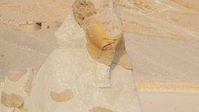 The Ancient Sculpture of the Sphinx. Is Near the Palace of Hatshepsut. the Sphinx Has the Body of an Animal, and the Head of a Pharaoh`s Man. the Head of the stock video footage