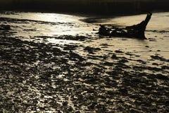 An ancient shipwreck on an estuary seashore Stock Images