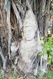 Ancient Shiva statue under the tree, Ancient Siam Stock Photo