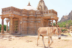 Ancient shrine and donkey in this massive Archaeological Park co Stock Image