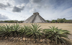 Ancient site of Chichen itza in Yukatan region of Mexico Royalty Free Stock Image