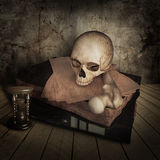 Ancient skull with books Royalty Free Stock Photo
