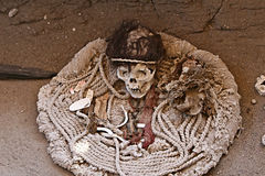 Ancient Skull and Fabric Royalty Free Stock Image