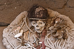 Ancient Skulls Royalty Free Stock Photo