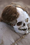 Ancient Skulls Royalty Free Stock Photo