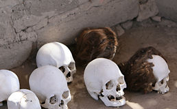 Ancient Skulls. Skulls and bones in Chauchilla, an ancient cemetery in the desert of Nazca, Peru. The remains of many Royalty Free Stock Photography