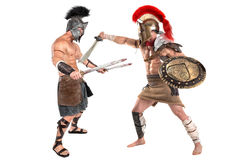 Ancient soldiers or Gladiators. Ancient warriors or Gladiators fighting isolated in white Royalty Free Stock Image