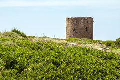 Ancient spanish tower on coastal upland, blue sky  and green aro. Und in sunny day Royalty Free Stock Images