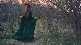 Ancient spirit of forest, lady in a long emerald velor dress with long flying sleeves and hem, evil nymph goes to punish