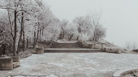 An ancient staircase in Elizavetinsky Park. A dull winter day. The trees are covered with hoarfrost, a strong wind blows, rocking trees stock footage