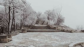 An ancient staircase in Elizavetinsky Park. A dull winter day. The trees are covered with hoarfrost, a strong wind blows, rocking trees stock video