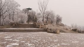An ancient staircase in Elizavetinsky Park. A dull winter day. The trees are covered with hoarfrost, a strong wind blows, rocking trees stock video footage